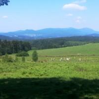 Rund um Frauenau im Bayerischen Wald