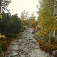 Aufstieg vom Plöckensteinsee
