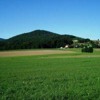 Gidibauer Trail