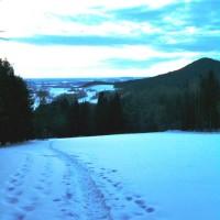 Ausblick Ruhmannsberg