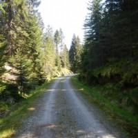 Radweg Haidmühle