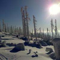 Tips zum Schneeschuhwandern