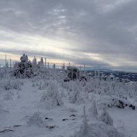 Schneeschuh Dreisessel