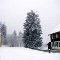 Leopoldsreut Winter Schneeschuh