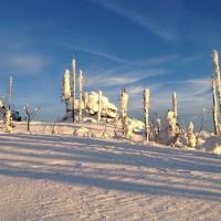 Hochstein Winter
