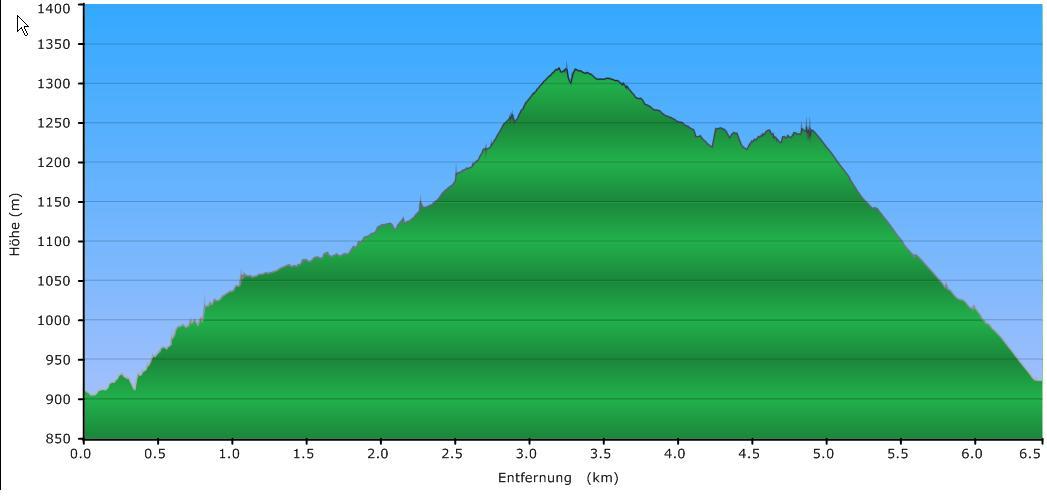 Höhenprofil der Tour: Hochstein / Dreisessel