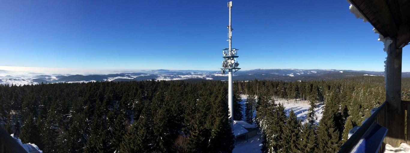 Haidel Bayerischer Wald