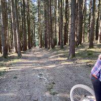 Wartenberg Mountainbike Wald