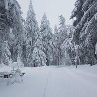 Winter Schneeschuh