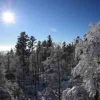 Nationalpark Winter mit Schneeschuh