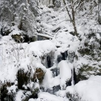 Kreuzbachklause Schneeschuhwanderung