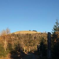 Aufstieg zum Lusen im Herbst