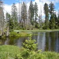 Schachten See