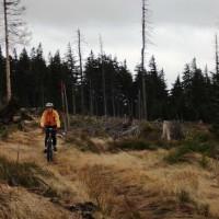 Trail am Hochficht