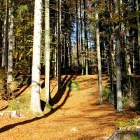 Aufstieg Felsenweg