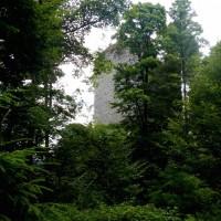 Ruine Kuschward