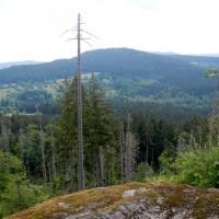 Aussicht über den Böhmerwald