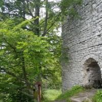 Alte Ruine Kuschward