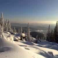 Winter am Dreisessel