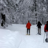 Schneeschuh Tour über den Haidel nach Leopoldsreut II