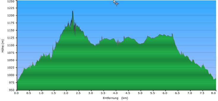 Höhenprofil der Tour: Schneeschuh Tour über den Haidel nach Leopoldsreut II