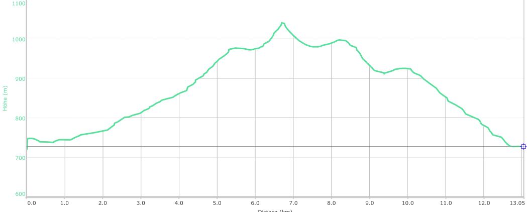 Höhenprofil der Tour: Svaty Tomas und Burg Wittighausen