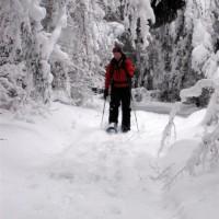 Schneeschuh Lichtenau