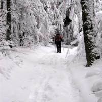 Schneeschuh Wanderung