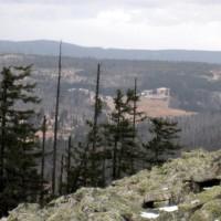 Blick vom Lusen nach Brznik