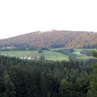 Oberfrauenwald