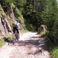 Mountainbike Regeln