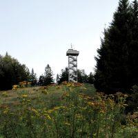 Oberfrauenwald Aussichtsturm