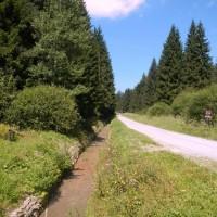 Südwestliche Wälder am Moldaustausee