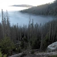 Plöckensteinsee im Nebel