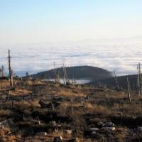 Hochficht im Nebel