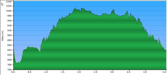 Höhenprofil der Tour: Grosse Kanzel und Felsenweg