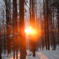 Rachel Winter Sonnenuntergang