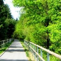 Ilz Donau Radweg