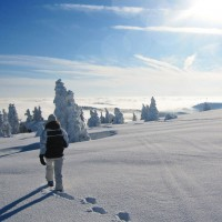 Schneeschuh im Bayerischen Wald